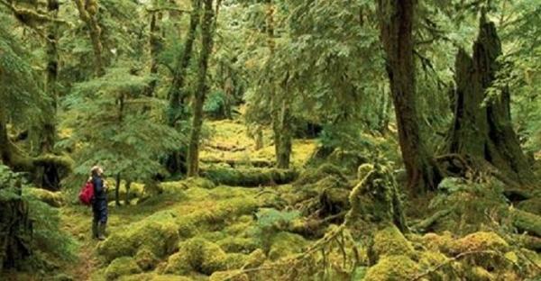 British-Columbia-uses-Oculus-Rift-for-virtual-tour