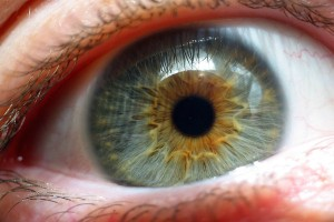 Scientists-are-developing-technology-of-three-dimensional-AR-harmless-for-eyes-i-look.net