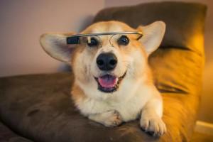 Кому нужен Google Glass?